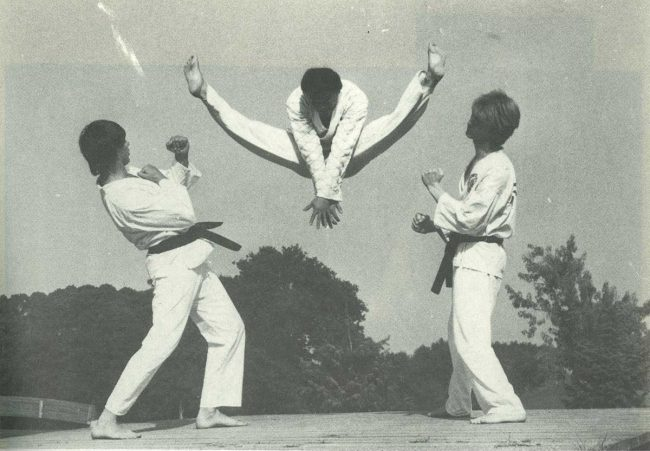 Taekwondo_web